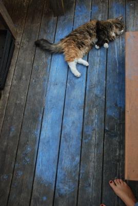 cottage trip 2 summer 2011 114